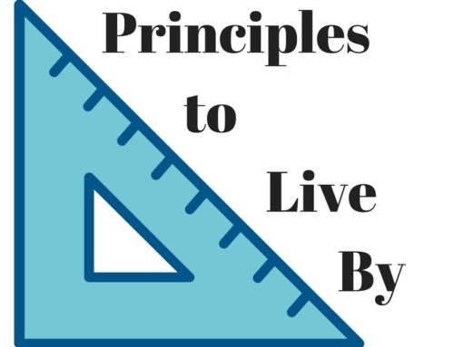 Developing a vision #5. Guiding principles: A strategy for leading and interacting in the Church